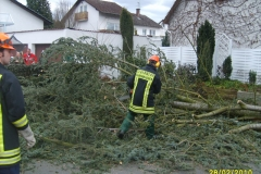 """Einsatz """"Baum auf Straße"""" am 28.02.2010"""