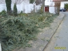 Einsatz_20100228_1_6.JPG