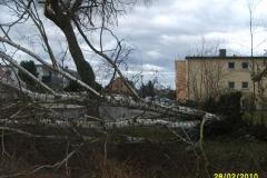 """Einsatz """"Entwurzelter Baum auf Brücke"""" am 28.02.2010"""