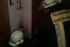 """Einsatz """"Kaminbrand"""" am 11.11.2010"""